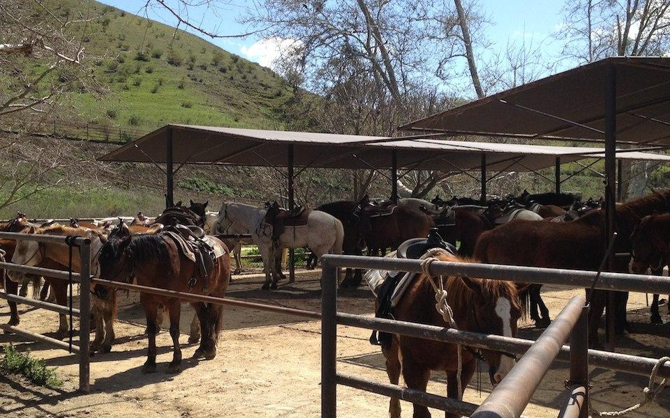 Luxury Resort Amp Horseback Riding In Santa Barbara