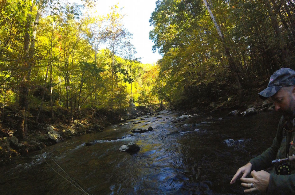 Learning to fly fish in gatlinburg tennessee for Fishing in gatlinburg tn